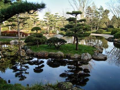 Japanischer Garten Ausflugstipp Für Kinder In Düsseldorf